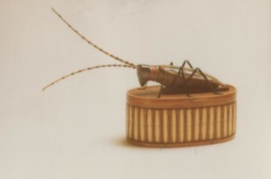 Cockroach Basket