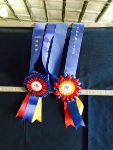 Marijke's 2 Regional Championships in Huntseat 2015